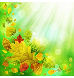autumn background with colorful leaves and place f vector image