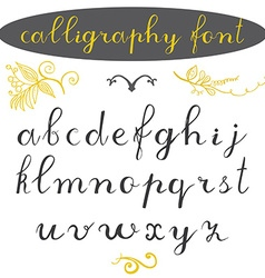 Alphabet letters lowercase hand drawn calligraphy vector image vector image