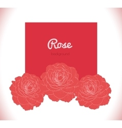 Red roses background vector