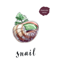 cooked snail with leaf of parsley vector image vector image