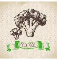 Hand drawn sketch broccoli vegetable Eco food vector image vector image