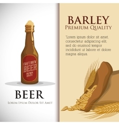 Premium quality craft brew beer vector