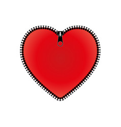 red heart with zipper vector image