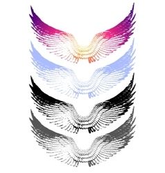 vintage wings on white background EPS 10 vector image vector image