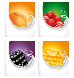 milk splash with apricot blackberry honey vector image vector image