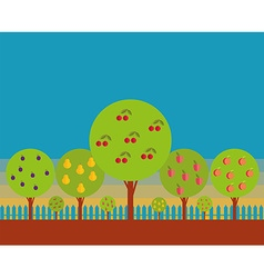 Orchard vector