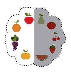 Pattern sticker with fruits in circular shape vector