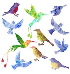 Set of polygonal birds silhouettes vector
