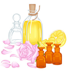 Aroma oils vector