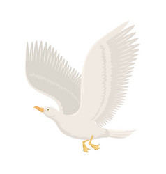 Cartoon gull flying bird vector