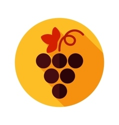 Grapes flat icon with long shadow vector image vector image