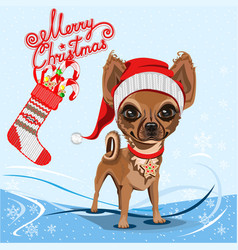 little dog in a red santa claus hat vector image