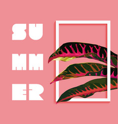Summer paradise design of tropical jungle plant vector