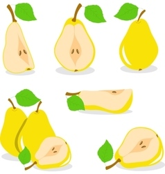Pear  yellow pears vector