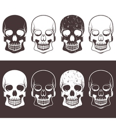 set of aggressive skulls design template vector image