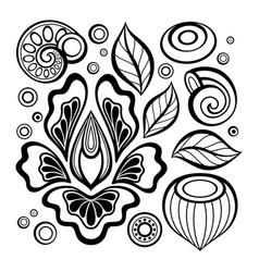 monochrome set of floral design elements in vector image vector image