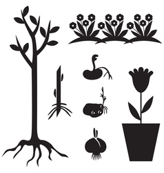 seedling set vector image