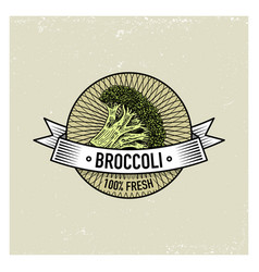 broccoli vintage set of labels emblems or logo vector image