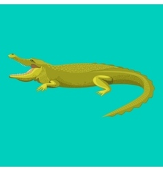 Dangerous green alligator is showing his teeth vector image vector image