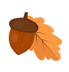 oak acorn is flat or cartoon style isolated on vector image vector image