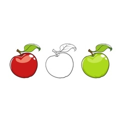 Ripe fresh apple with leaf vector