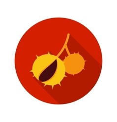 Chestnut flat icon with long shadow vector image