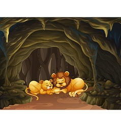 Two lions sleeping in the cave vector