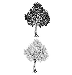 Two young contour tree vector