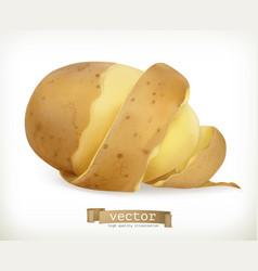 vegetable potato peel spiral food vector image