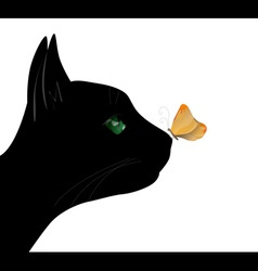 Butterfly on the cat nose vector