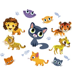 Collection of wild cats vector