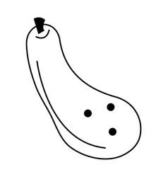 Zucchini vegetable icon image vector