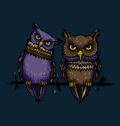 Cartoon image of cute owls vector