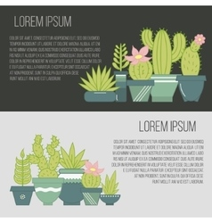 flat banners with succulent plants and vector image vector image