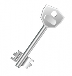 one key vector image vector image