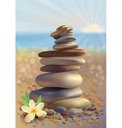 Spa stones and white flower vector