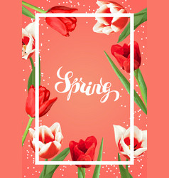 Spring background with red and white tulips vector