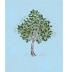 Young tree on a blue background vector image