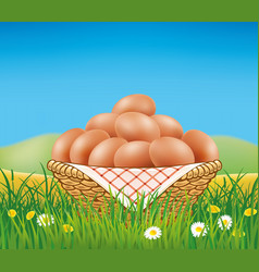 Eggs in basket on summer field with daisy flowers vector
