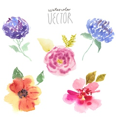 Watercolor flowers set vector