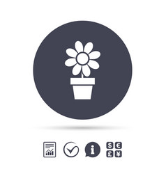 flowers in pot sign icon bouquet of flowers vector image