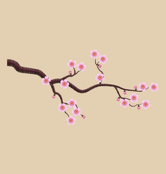 Blooming sakura branch vector