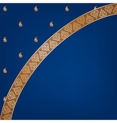 Indian sari background vector
