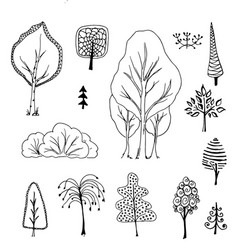 Trees birch bushes tree doodle vector