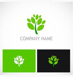 plant green leaf botany logo vector image