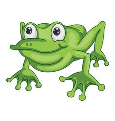 a green frog vector image