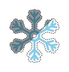 Snowflake winter snow vector