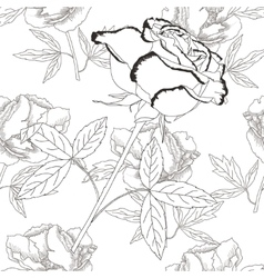 Seamless pattern black and whiteRose and peonies vector image