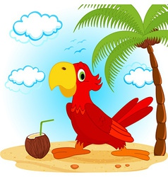 Parrot on beach vector