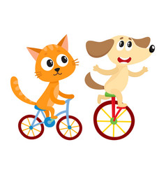 Cute little dog and cat kitten characters riding vector